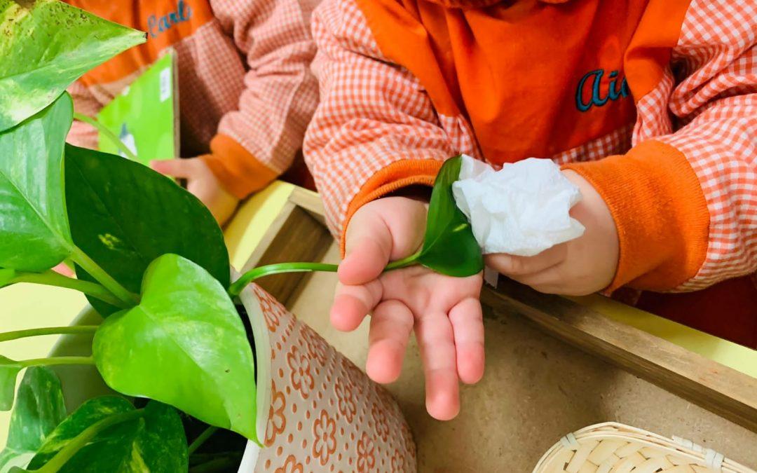 Entendiendo el método Montessori